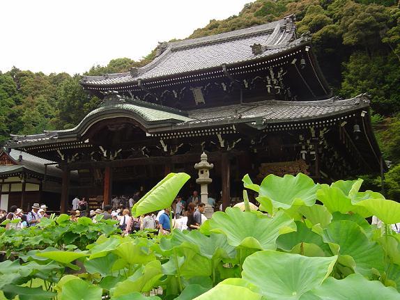 mimurotoji_0361