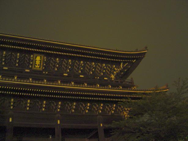 yuyo_0081