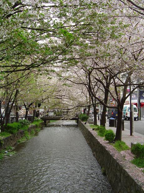 Harukamogawa_012