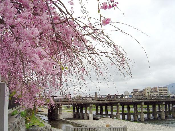 Harukamogawa_0271