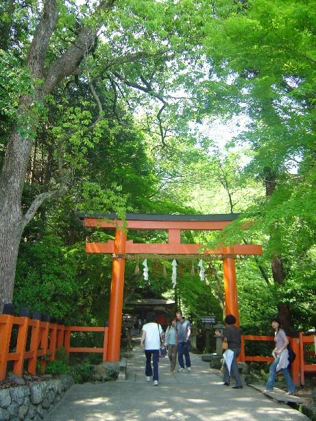 Kamigamo_0241