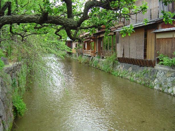 Tomoto_0131